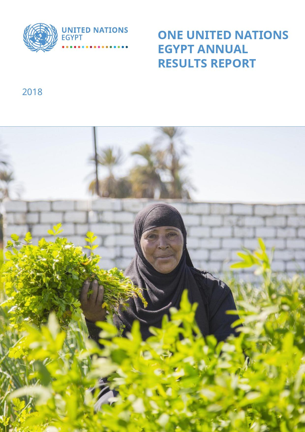 One United Nations Egypt Annual Results Report 2018