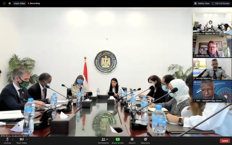 Egypt, UN review 2020 achievements, discuss upcomingdevelopment cooperation plans