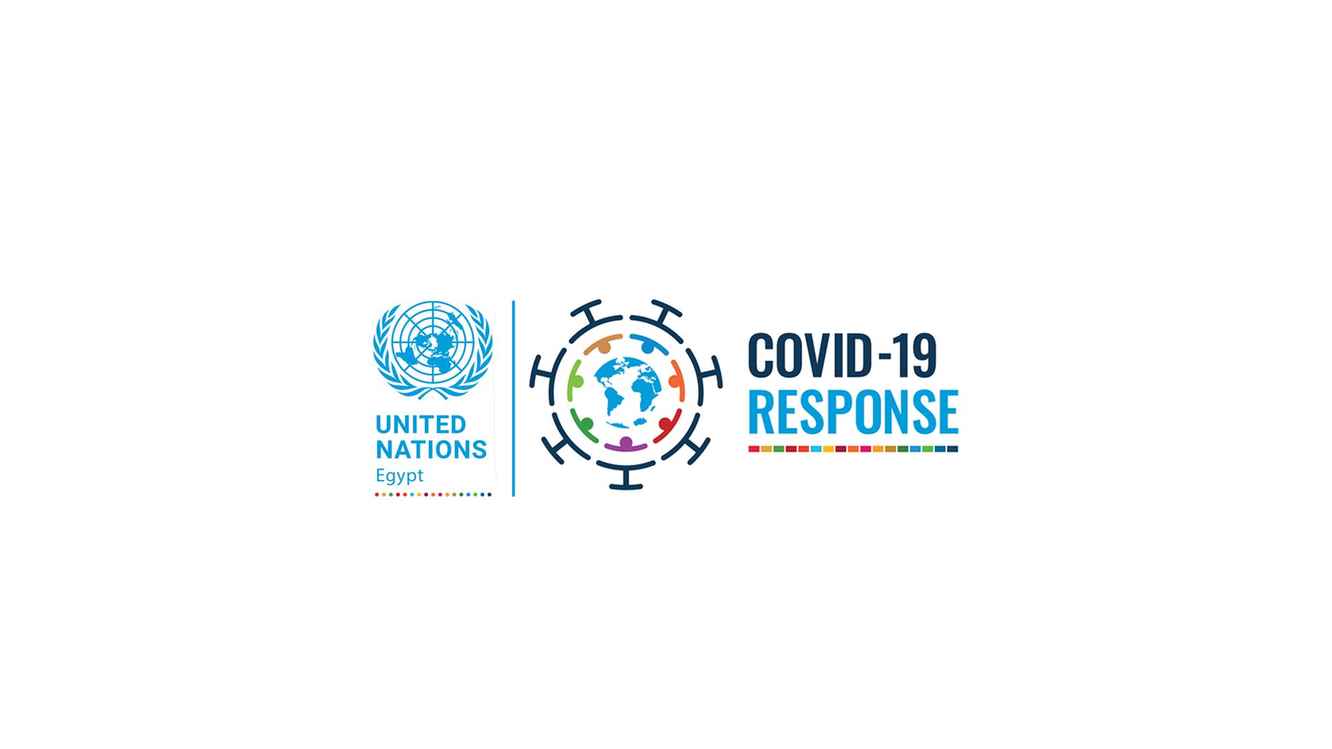 UN Egypt COVID-19 Insight Series